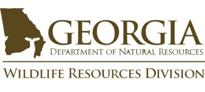 Georgia Department of Natural Resources | Wildlife Resources Division